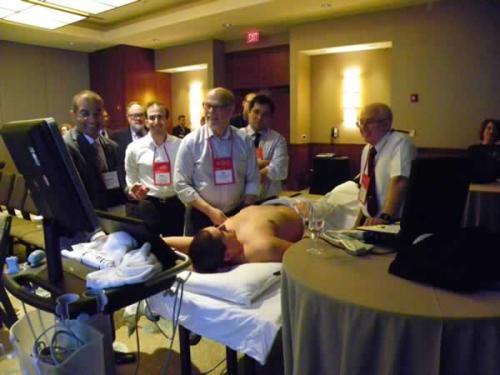 Elsharkway ultrasound